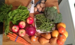 My first bunch of produce from Green BEAN Delivery.